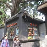 Guangzhou Southern Theater