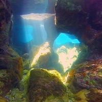 Клуб подводного плавания Triton