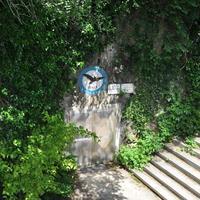 Domica Cave