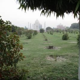 Мехтаб-Багх
