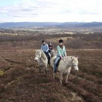 Newtonmore Riding Centre