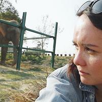 Wildlife SOS Bear Sanctuary