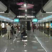 Kowloon Canton Stream Maofeng