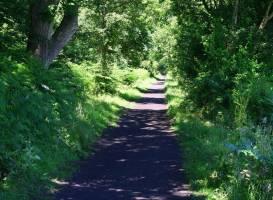 Scarborough to Whitby Rail Trail