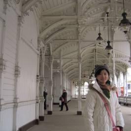 Рыночная колоннада (Карловы Вары)