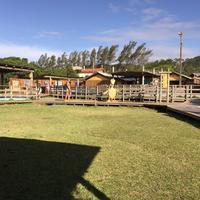 Projeto Tamar Florianopolis