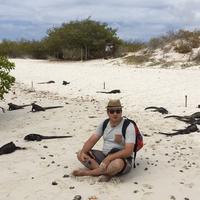 Galapagos Beach at Tortuga Bay