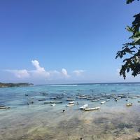 Seaweed Farming, Nusa Lembongan