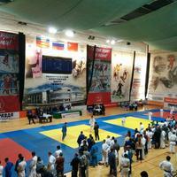 Универсальный спортивный центр