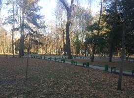 Парк Стефана Великого