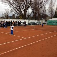 Tennis Atheneo