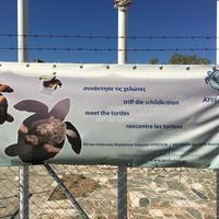 Sea Turtle Rescue Centre