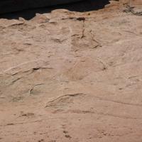 Matsieng's Footprints