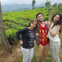 Tea Country, PTPN 8