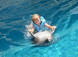 Дельфинарий Кемер