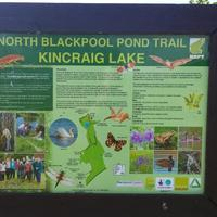 North Blackpool Pond Trail