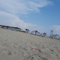 Beach Velika Plaza
