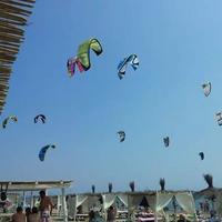 Kite's Angels