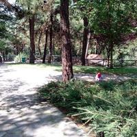 Thessaloniki Zoo
