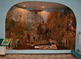 Музей природы и экологии