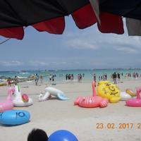 Ко Лан (Коралловый остров)