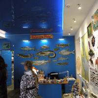 Музей Рыбинские рыбы