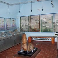 Museo Civico Antonio Collisani