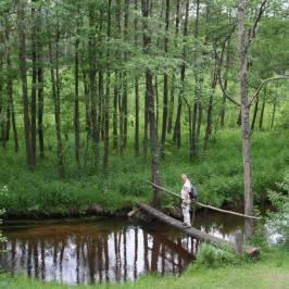 Дзукийский национальный парк