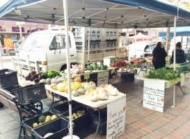 Bridge Mall Farmers Market