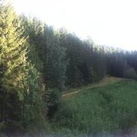 Природный парк Самаровский чугас