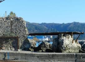 Руины сухумской крепости Диоскурии