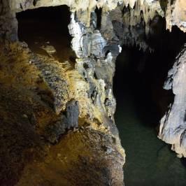 Vadu Crisului Cave
