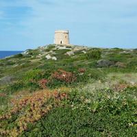 Torre d'Alcalfar