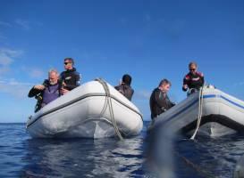 Buccaneer Adventures Niue Dive