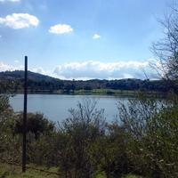 Lago di Monterosi