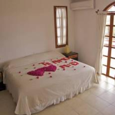 Galapagos Suites Bed & Breakfast