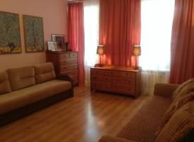 Apartment on Radishcheva 26