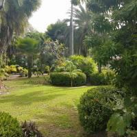 Palm Villa And Pool