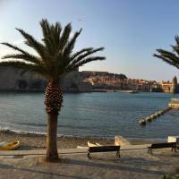 Residence Collioure Plage Appart