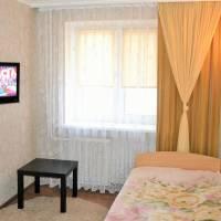 One-Bedroom Apartment Apartment on Sovetskaya