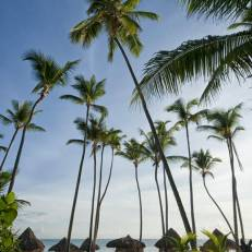 Melia Punta Cana Beach Resort Adults Only -All Inclusive