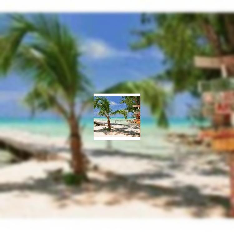 Туристы назвали «курорты мечты»