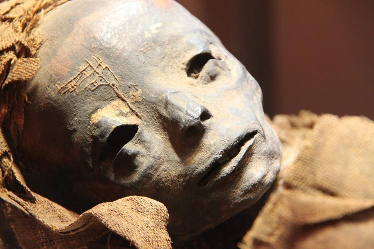 Во всех египетских музеях разрешили фотографировать, но без вспышки