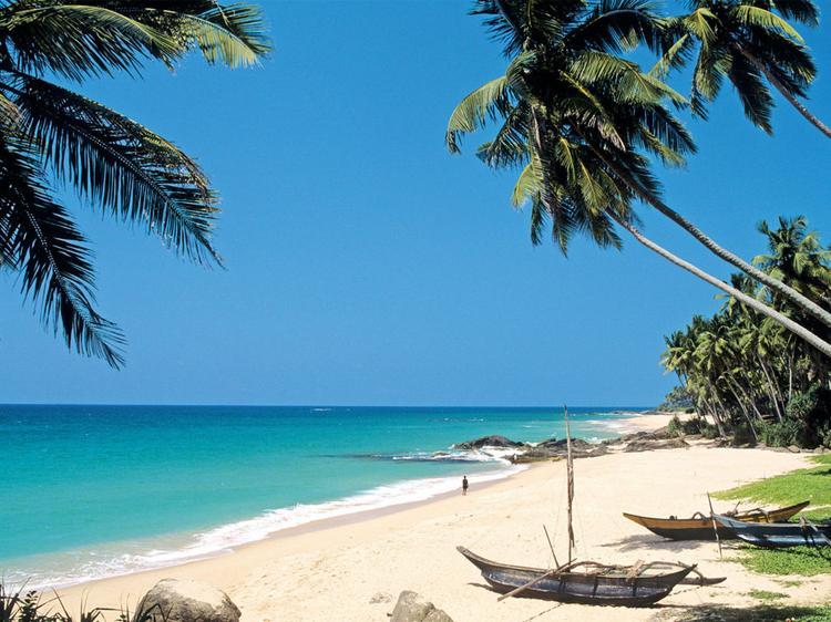 Шри Ланка вводит новые требования для туристов и просит за визу уже 100 долларов США, Туристам Коломны, США Россия Отпуск Коломна аэропорт